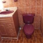 bano-apartament-quetzaltenango-e1404779868513