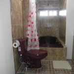 bathroom-apartment-3b-xela-e1404778149699